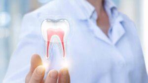mano che sostiene un dente trasparente con canali rossi